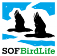 SOF-logo