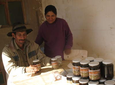 honey-production-empowering -quechua-indigenous-communities-bolivia-armonia