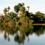 barba-azul-nature-reserve-bolivia-armonia (2)