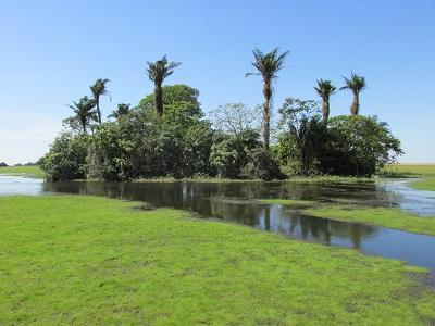 barba-azul-nature-reserve-bolivia1