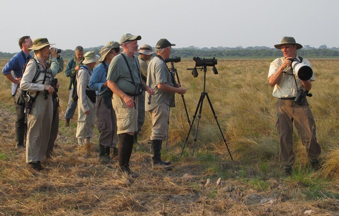 Jock Jumper tour group taking pictures of the amazing Cock-tailed Tyrant.