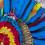 Seis mil parabas salvadas por el programa plumas alternativas de Armonía