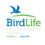 New executive comite for BirdLife America´s regional council elected