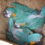 Breeding Outcomes Attest to Success of Artificial NestBox Program at Laney Rickman Blue-throated Macaw Reserve