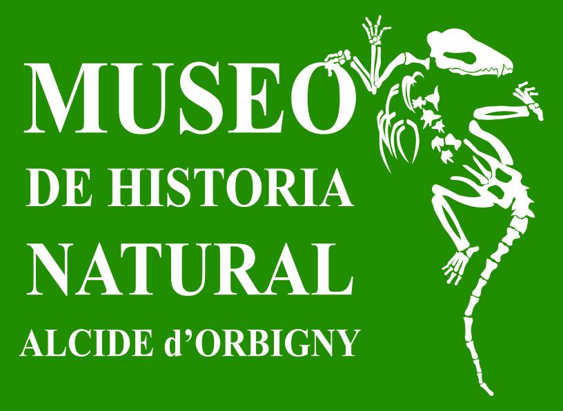 museo d'orbigny